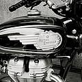 Royal Enfield Motorbike by Shaun Higson