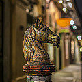 Royal Knight by David Morefield