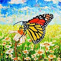 Royal Monarch Butterfly In Daisies