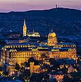 Royal Palace Of Buda In Budapest by Emi Cristea