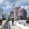 Royal Palm Way Bridge by Bill Cobb
