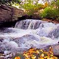 Royal River White Waterfall by Elizabeth Dow