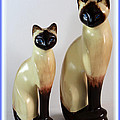 Royal Siamese - Ceramic Cats by Barbara Griffin
