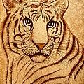 Royal Tiger Coffee Painting by Georgeta  Blanaru