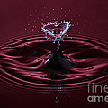 Rubies And Diamonds by Susan Candelario