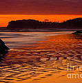 Ruby Beach Afterglow by Inge Johnsson