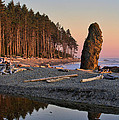 Ruby Beach by Don Hall