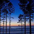 Ruby Beach Sillouette II by Dana Kern