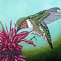 Ruby-throated Hummingbird by Fran Brooks