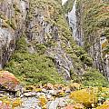 Rugged Mountain Wilderness Vegetation by Stephan Pietzko