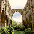 Ruins Abbaye De Beauport Paimpol Bretagne by Menega Sabidussi