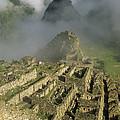 Ruins Of Machu Picchu Peru by Shaun Barnett