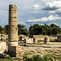 Ruins Of Paestum by Prints of Italy