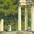Ruins Of Roman Columns In Glanum  by Jaroslav Frank