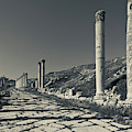 Ruins Of Roman-era Columns by Panoramic Images