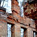 Ruins Of Sweetwater Manufacturing Company by Tara Potts