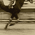 Run by Margie Hurwich