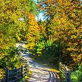 Runner's Path In Autumn by Parker Cunningham