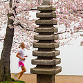 Running By The Tidal Basin by Leah Palmer