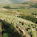 Running In Esquel, Chubut, Argentina by Marcos Ferro
