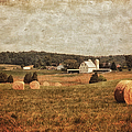 Rural America by Kim Hojnacki