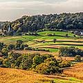 Rural America by Tom Weisbrook