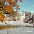 Rural Early Snow In Western Colorado  by Dale Jackson