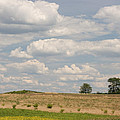 Rural Field Landscape In Maryland by Donna Haggerty