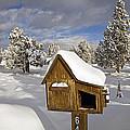 Rural Mailbox by Buddy Mays