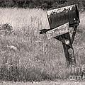Rural Route Mail Call  by Jean OKeeffe Macro Abundance Art