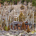 Rural Rustic Rundown Rocky Mountain Cabin by James BO  Insogna