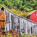 Rural Shenandoah  by JC Findley