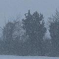 Rural Snowfall by Joshua Bales