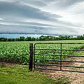 Rural Storms by Debbie Orlando