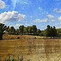 Rural Wi Field W Texture by Anita Burgermeister