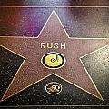 Rush Has A Star by April Reppucci
