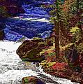 Rushing River by Nancy Marie Ricketts