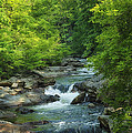 Rushing Smoky Mountain Stream E221 by Wendell Franks