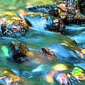 Rushing Water Over Fall Leaves by Optical Playground By MP Ray