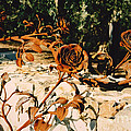 Rust And Roses by Andrea Goodrich