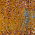 Rust by John Shaw