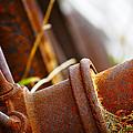 Rust by Matthew Blum