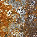 Rust Never Sleeps by Les Cunliffe