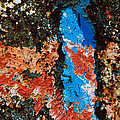 Rust - red and blue abstract