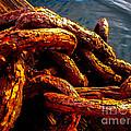 Rust by Robert Bales