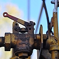 Rusted Flagg Valve by Liane Wright