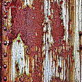 Rusted by Marcia Colelli