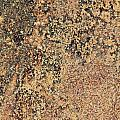 Rusted Metal by Dan Radi