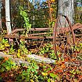 Rusted Old Plow by Rebecca Reed