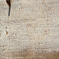 Rusted Panel 1 by Anita Burgermeister